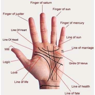 Answers to FAQs in palmistry